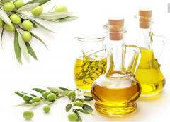 橄榄油与其他油的什么区别