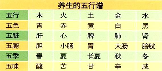 中医五行与四季养生