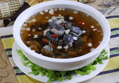 春季养生汤煲汤食谱 你值得拥有