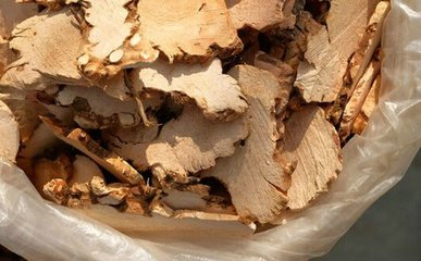 土茯苓养生保健作用与方法